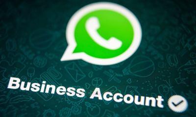 shutterstock 775279453 - WhatsApp ganha versão Business para pequenas e médias empresas
