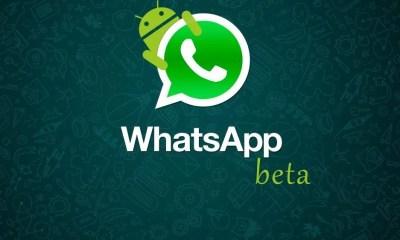 whatsapp beta android smt - WhatsApp Beta para Android ganha loja de Stickers exclusivos