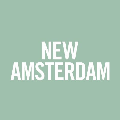 New Amsterdam tutto quello che sappiamo post season finale