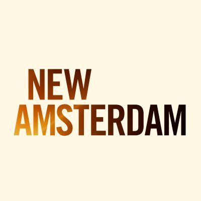 "New Amsterdam 3 x 08 ""Catch"" Recensione"