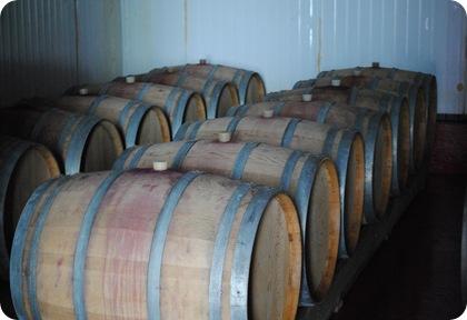 Leuria Winery 010