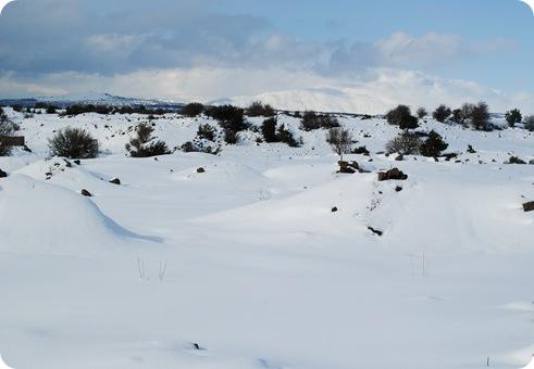 Snowy Golan Heights 114