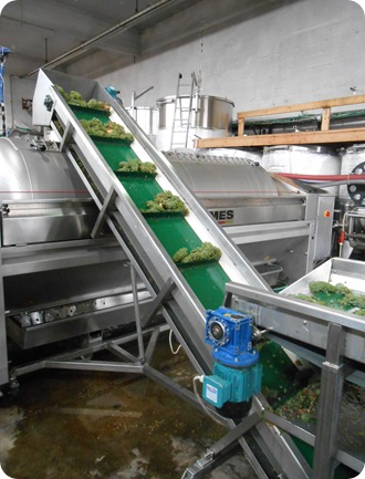Pelter Winery (4)