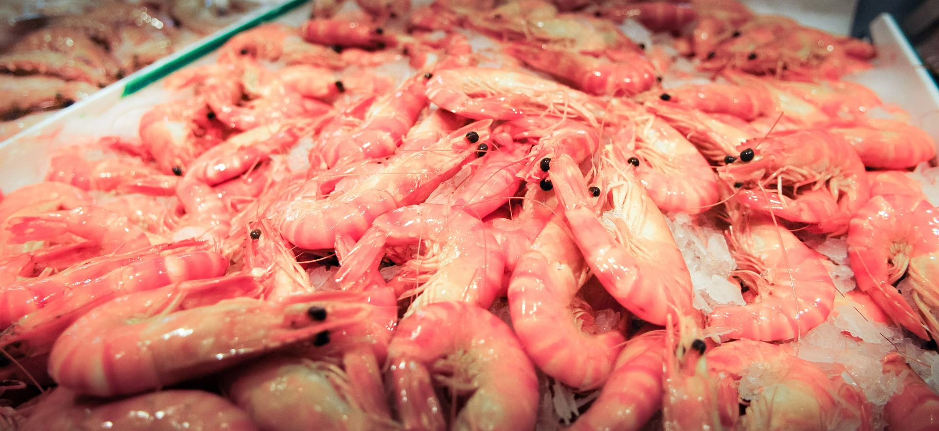Antidumping duties imposed on shrimp imports from Brazil, China, Ecuador, India, Thailand, and Vietnam