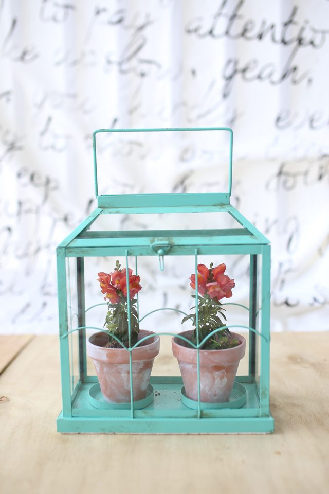 Easy DIY Flower Terrarium - Beautiful Little Miniature Greenhouse Made from a Candle Holder