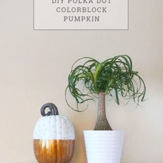 DIY Polka Dot Color Block Pumpkin