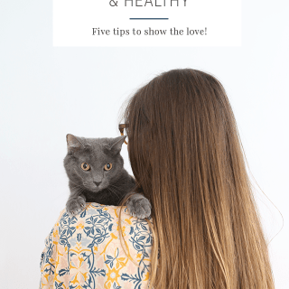 5 Tips – How to Keep Your Cat Healthy
