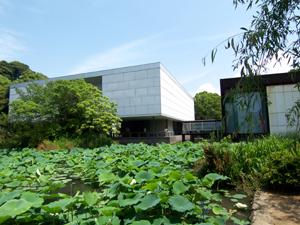 神奈川県立近代美術館の鎌倉館