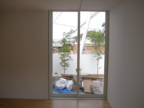 室内から見る玄関アプローチのモミジ