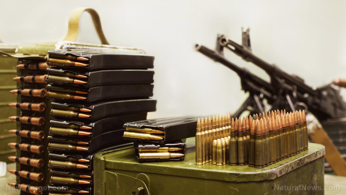How Much Is Enough When Stockpiling Ammo