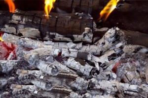 wood-ash-uses