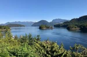 Vancouver Island Puzzled by Rare Cholera Outbreak