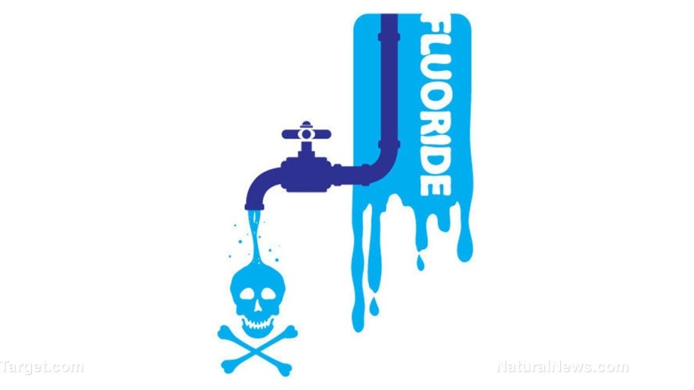Fluoride In the Water