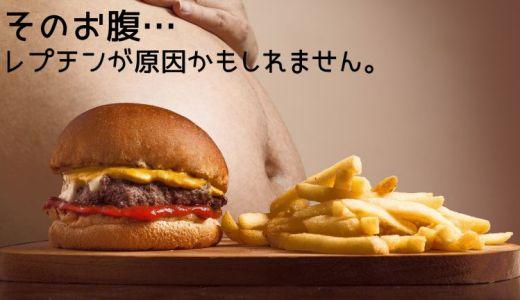 【メタボ予防】食欲を操るレプチンとは?