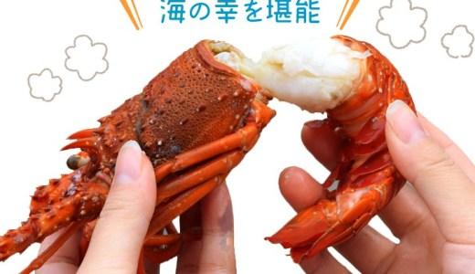 【おうちでごちそう】豪華海鮮 海宝焼き|カンカン焼きを食レポ!