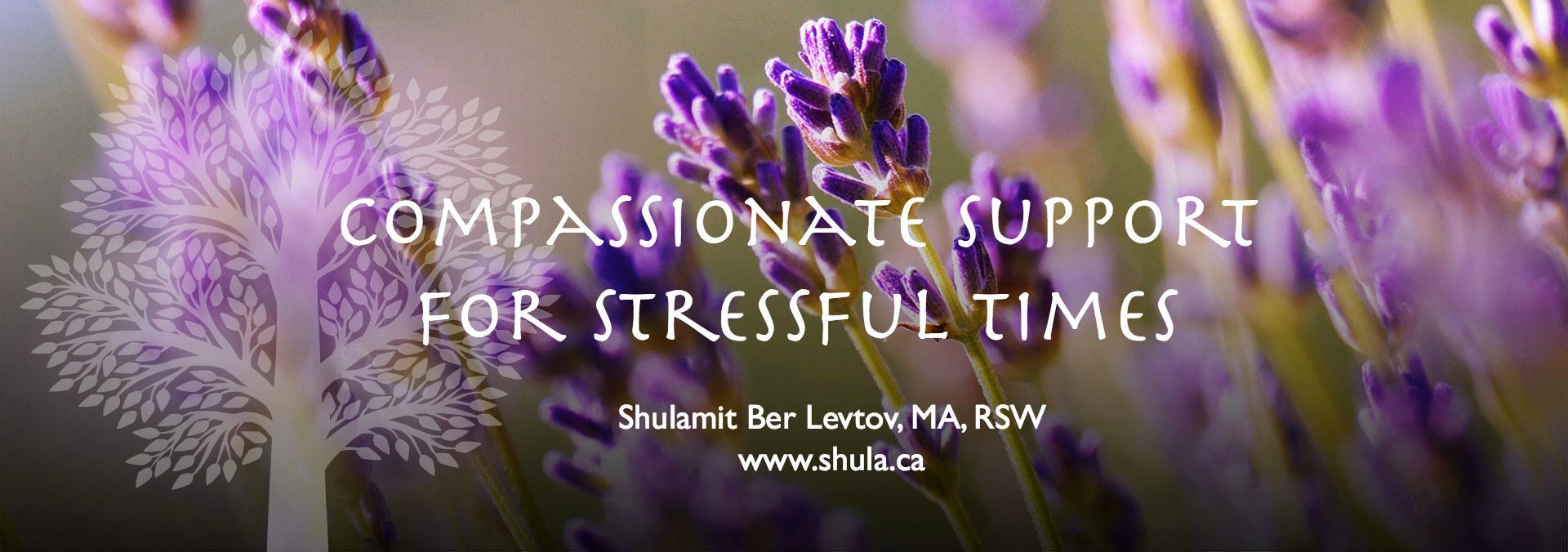 The healing power of essential oils - Shulamit Berlevtov