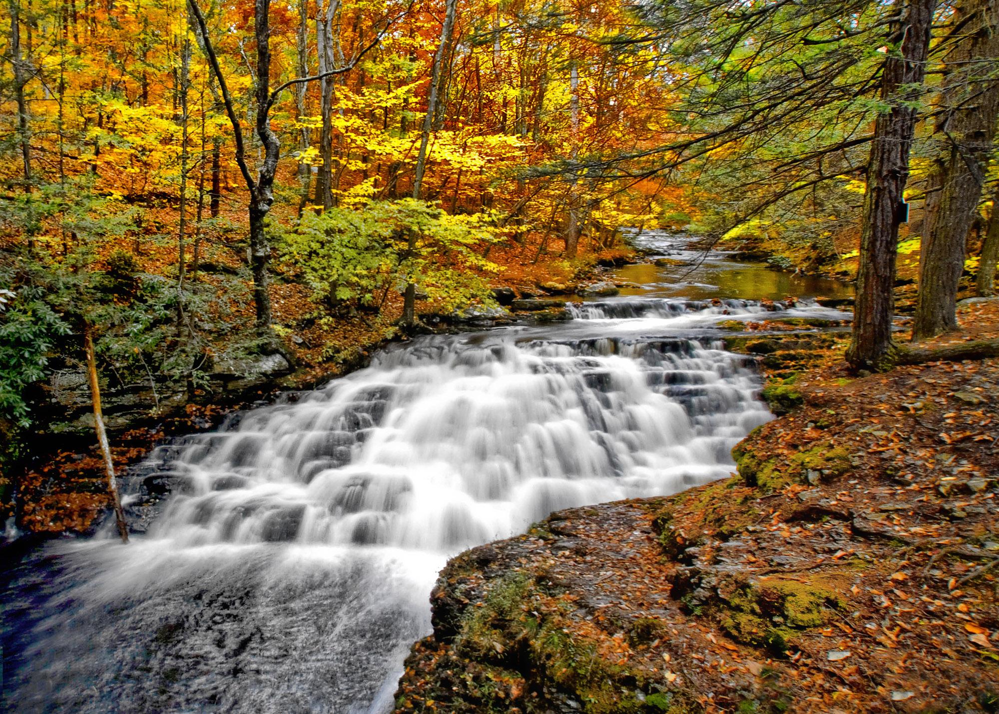 Autumn Color At Bushkilll Falls Pa Shutterbug
