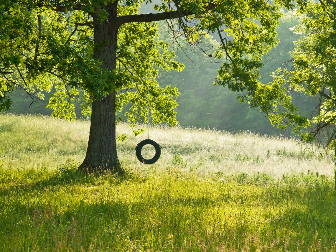 Tire Swing in Thompson Station, Tennessee