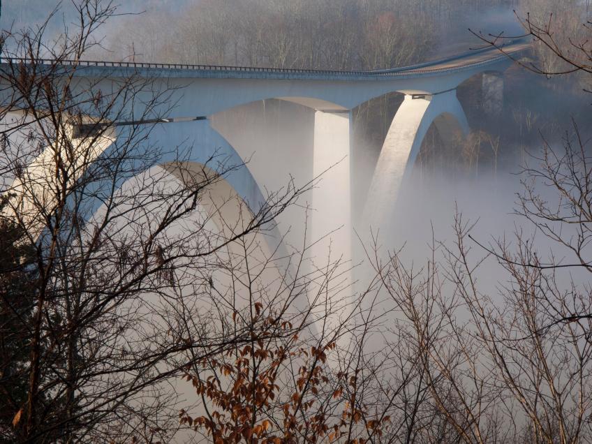 Fog & Floods