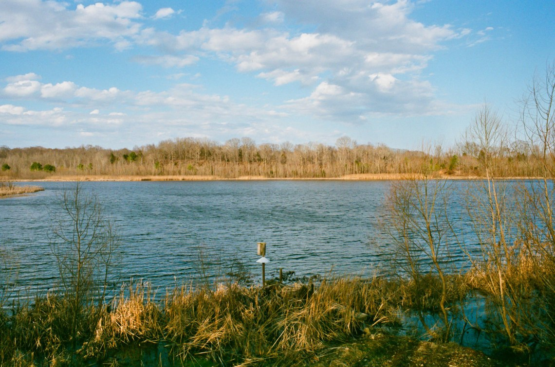 Williamsport Lakes - Williamsport, Tennessee - Olympus OM1 / 28mm f3.5 / Fuji Superior X-Tra 400 / Film Box Lab