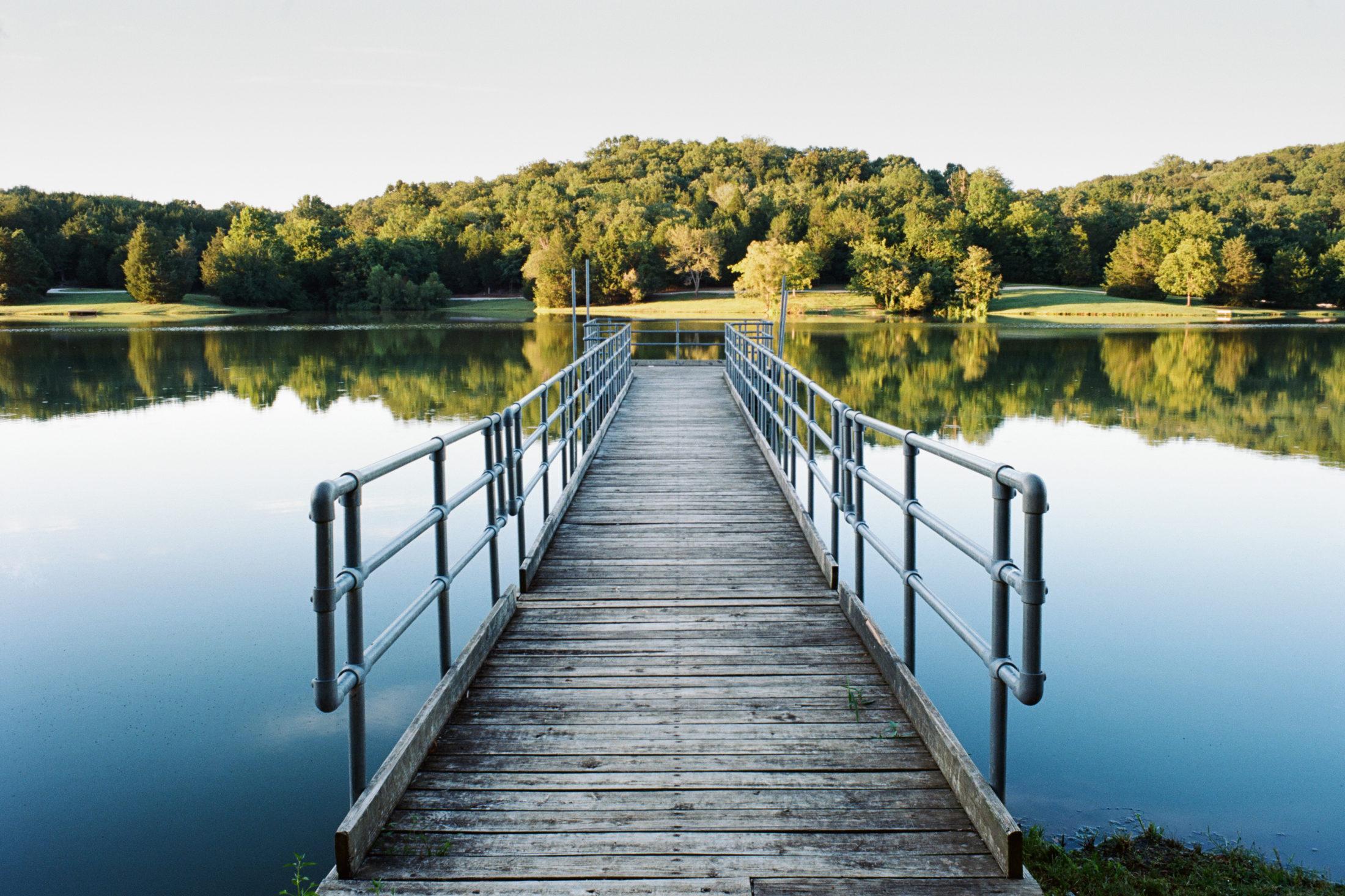 Random Landscapes Across 5 Counties