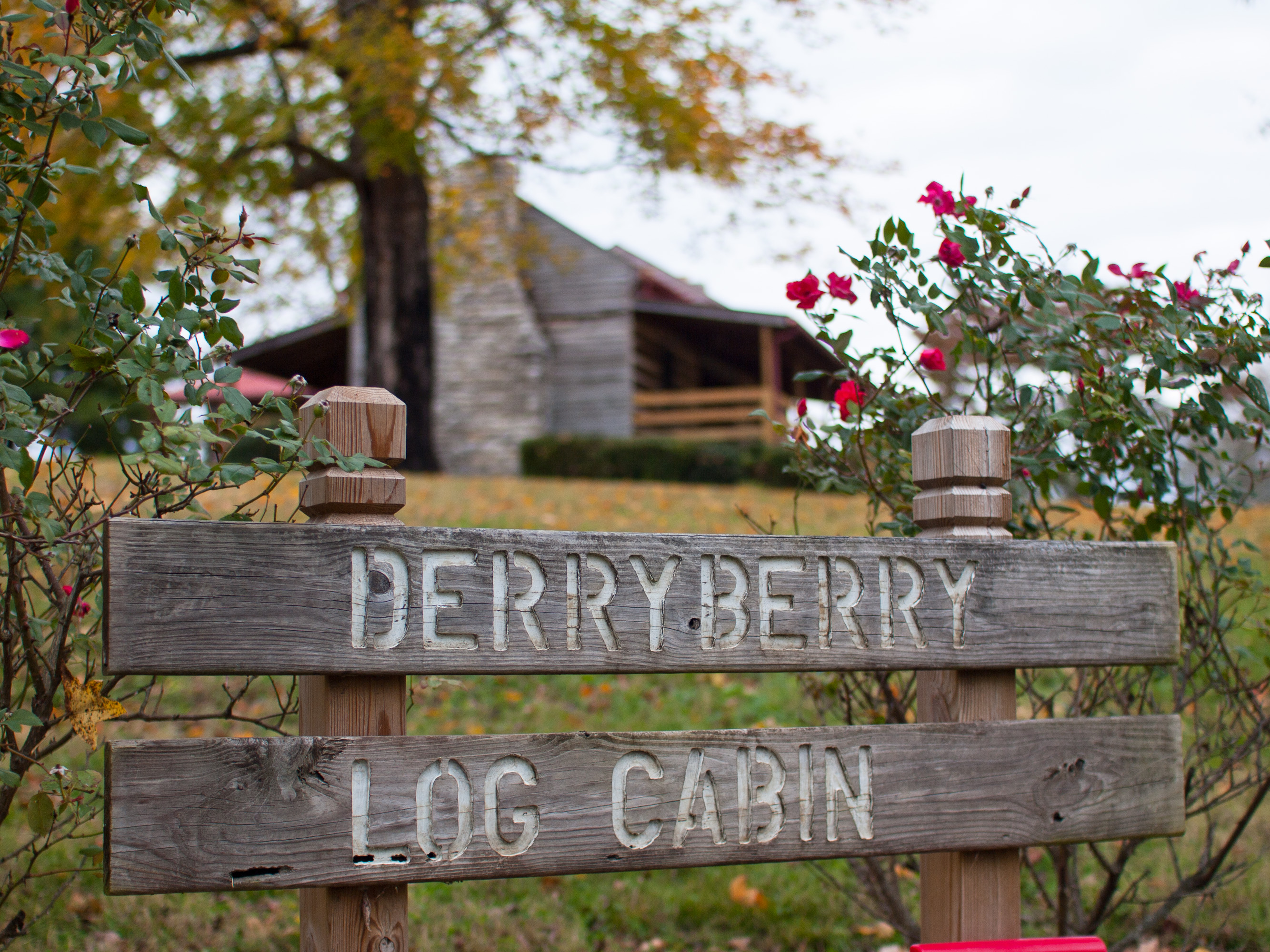 Autumn Colors at Derryberry Log Cabin