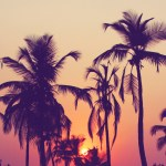 Using Design Trends To Create A Facebook Cover Design Shutterstock