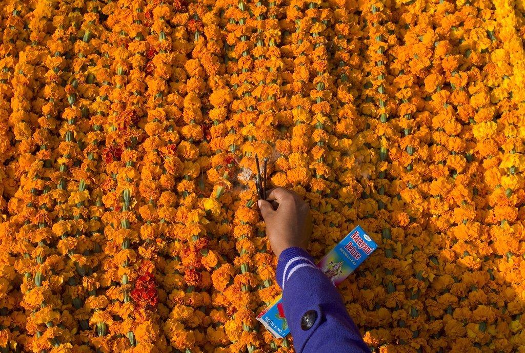 Marigold Garlands for Diwali Festival