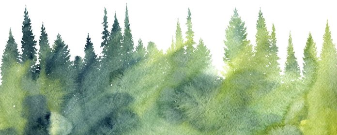 Watercolor Nature Art
