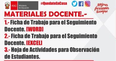 """Ficha de Trabajo en Excel y Word para el Seguimiento del Docente y Estudiante – """"Aprendo en Casa""""."""