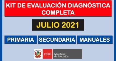KIT DE EVALUACIÓN DIAGNÓSTICA COMPLETA para el mes de Julio 2021 – Primaria, Secundaria y Manuales [Conócelos aquí]