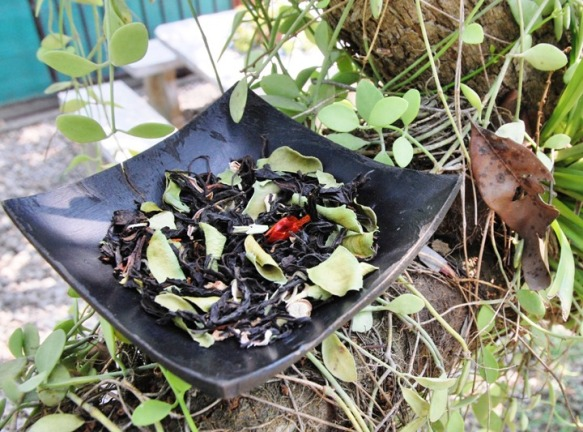 Siam Blend Black: aromatic flavored Thai tea blend in my tree