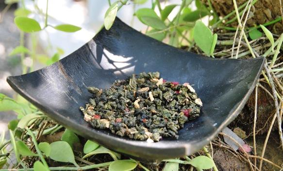 Monsoon Thai Oolong Tea Blend in the green in my gardend in my garden