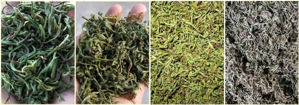 Fengqing Yunnan Black Tea: processing stages