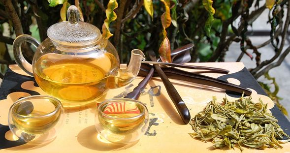Anji Bai Cha Green Tea /Anji White tea perpared in my garden in Chiang Mai, Thailand