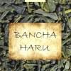 Japanese Spring Bancha Tea