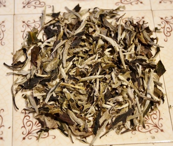 Ancient Tree White Moonlight White Tea from Yunnan's ancient tea trees - dry tea leaves