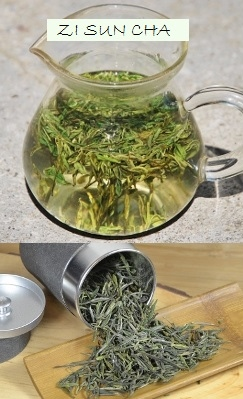 Zi Sun Cha Green Tea from biodiverse health and environment-friendly cultivation