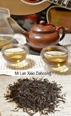 Mi Lan Xiang (Honey Orchid) Phoenix Dancong Oolong Tea