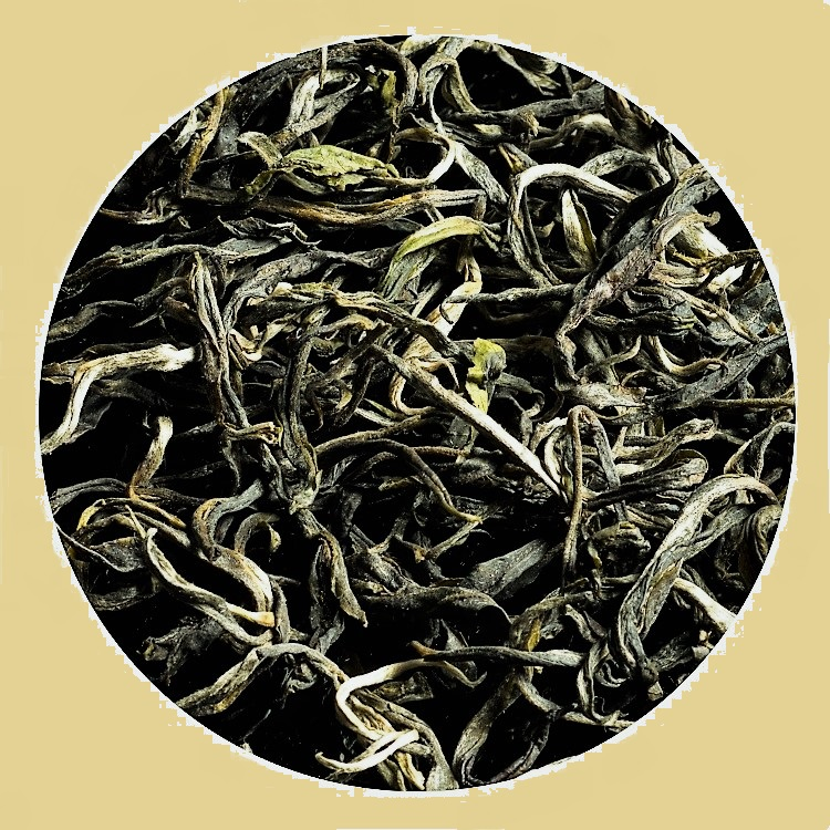 Green tea from seed-raised, biodiverse grown tea trees on Bolaven Plateau, south Laos