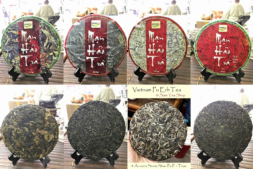 4 Ancient Snow Shan Pu Erh Teas - Collage