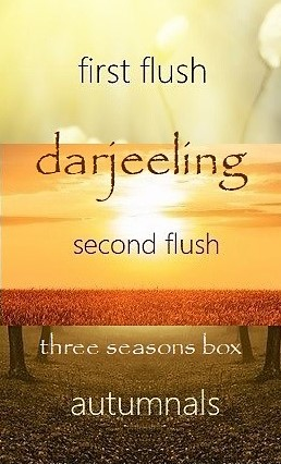 6 Darjeeling teas from 3 seasons in 1 box