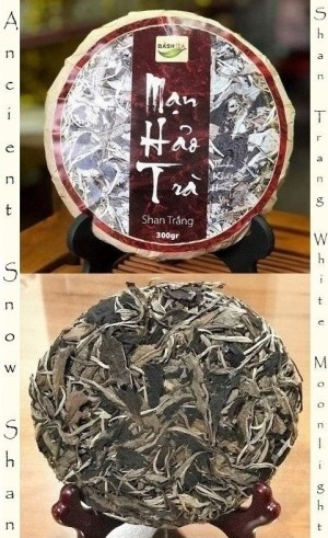 Ancient Snow Shan Trang White Moonlight Tea
