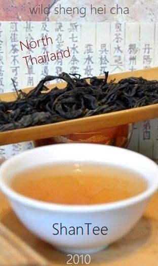 "ShanTea - Wild Sheng Hei Cha (= raw ""Pu Ehr"" Tea) from the border region north Thailand / Myanmar"