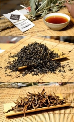 Dhara Golden Tips Black Tea (forest-friendly)