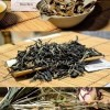 Dhara White Moonlight White Tea from forest-friendly cultivation in northern Thailand