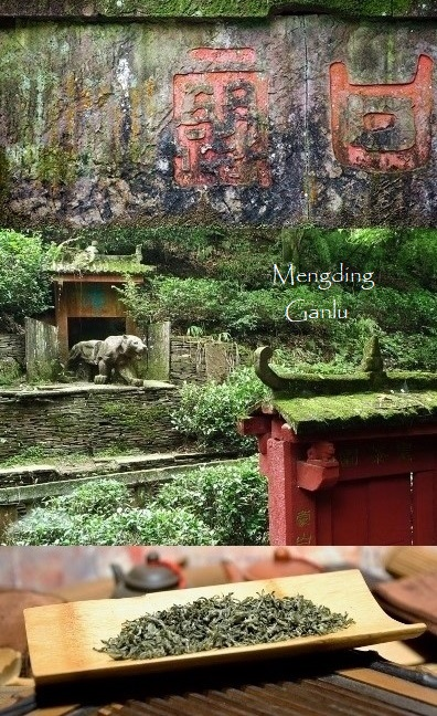 Mengding Ganlu Green Tea from Mengding Mountain, Ya' An county, Sichuan province, China