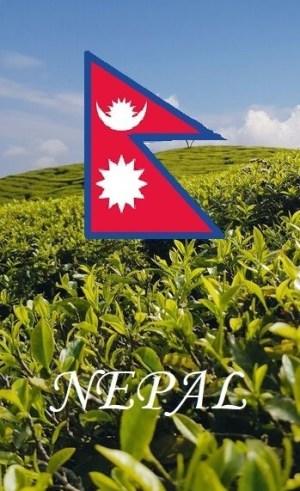 Tea from Nepal