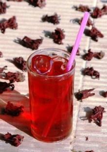 Roselle Hibiskus Eis-Tee im Glas mit Eiswürfeln und Trinkhalm