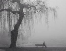 Disa gjera qe duhet te beni nese ndiheni te vetmuar.